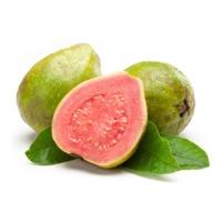 Guava Puree & Concentrate