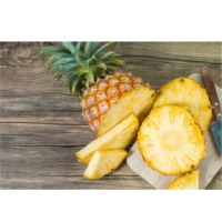 Pineapple Juice Puree & Concentrate
