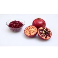 Pomegranate Juice Pulp & Concentrate