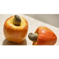 Cashew Apple Pulp