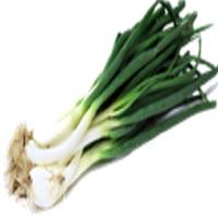 Onion Leaf