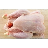 Frozen Halal Whole Chicken