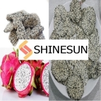 Fresh Dragon Fruit From Viet Nam