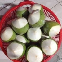 Fresh Young Coconut