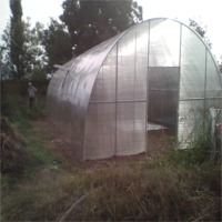 Tunnel Polycarbonate Greenhouses