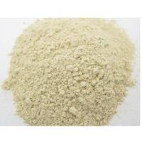 Organic Garlic Extract
