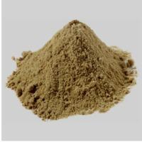 Organic Bacopa Extract