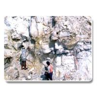 Calcite Granules