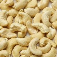Cashew Nuts W180, W240, W320, W450, W500