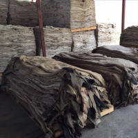 Donkey Hides, Wet Salted Cow Hides