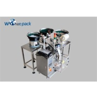 Dowels Packing Machine/ Peg Packing Machine