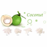 Dried Coconut - Slice / Chunk / Stick / Dice