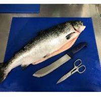 Norwegian Atlantic Salmon HOG (Frozen / Fresh)