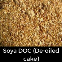 De-oiled Soya meal cake/Soya DOC (De-oiled cake)