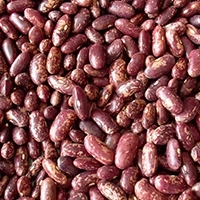 Red And Light Speckled Kidney Beans