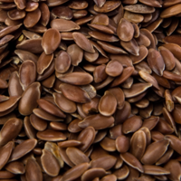 Flax Seeds / Linseed