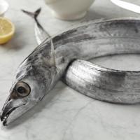 Fresh And Frozen Ribbon Fish