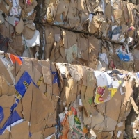 OCC Waste Paper in Bales