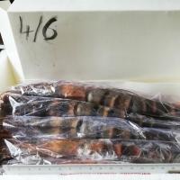 Wild Raw Whole Shrimp (Peneaus monodon)