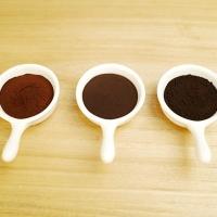AIPU Food CCP-002 Caramel Color Powder E150c