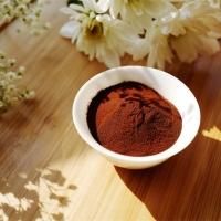 Aipu Food CCP-001 Caramel Color Powder E150c