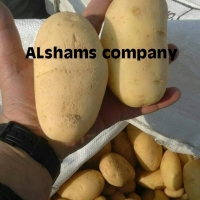 Fresh Potatoes With High Quality