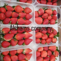 Fresh Strawberry With High Quality
