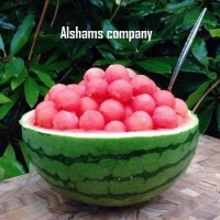 Egyptian Fresh Watermelon With Best Quality