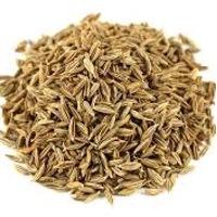 Cumin Seeds A Grade 99% Purity