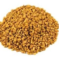 Fenugreek Seeds - Sortex