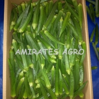 Indian Fresh Okra (Lady Finger) (Bhendi)