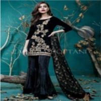 Velvet Embroidered Ladies Suit