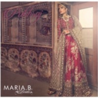 Silk Embroidered Bridal Suit