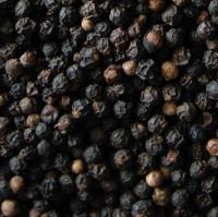 Sarawak Black Pepper