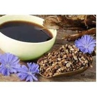 Roasted Chicory Extract
