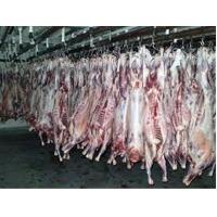 Frozen Boer Goats