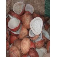 Dried Coconut Copra