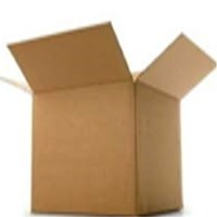 Paper Carrogated Box