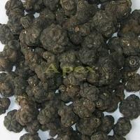 Morinda Citrifolia Fruits