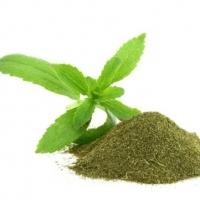 Organic Stevia Leaves Powder