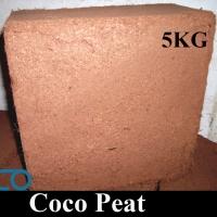 Cocopeat