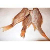 Dried Perch (Norway Haddock)