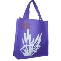 Non Woven Printed Gift Bag