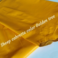 Leather Gloves Sheep Cabretta Col Golden Tree