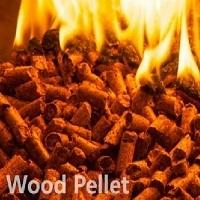 Quality Wood Pellet
