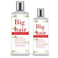 Big Hair Anit- Dandruff Shampoo