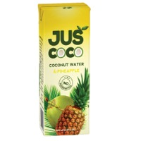 Indian Fruit Juices Suppliers, Manufacturers, Wholesalers and