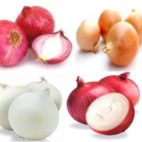 Fresh Yellow Onion, Red Onion