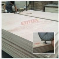 Commercial Combi Hardwood Core Twin Plywood