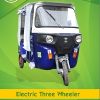Electric Three Wheeler Custom Made